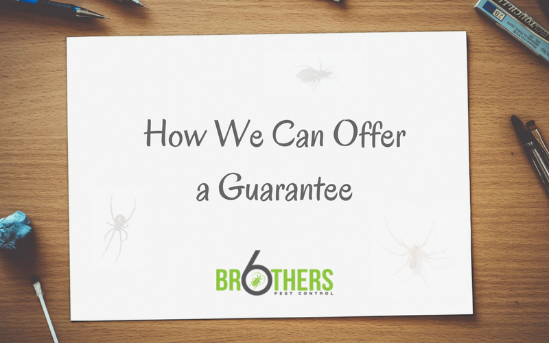 How We Can Offer a Guarantee