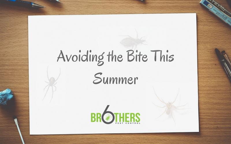 Avoiding the Bite This Summer