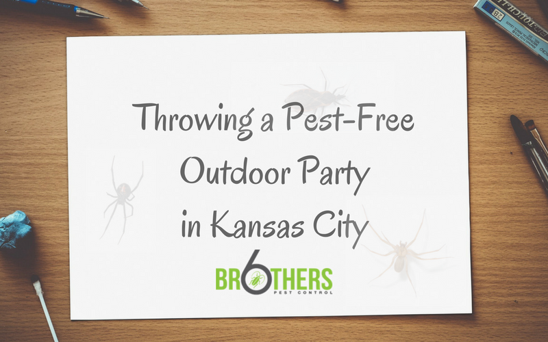 Throwing a Pest-Free Outdoor Party in Kansas City