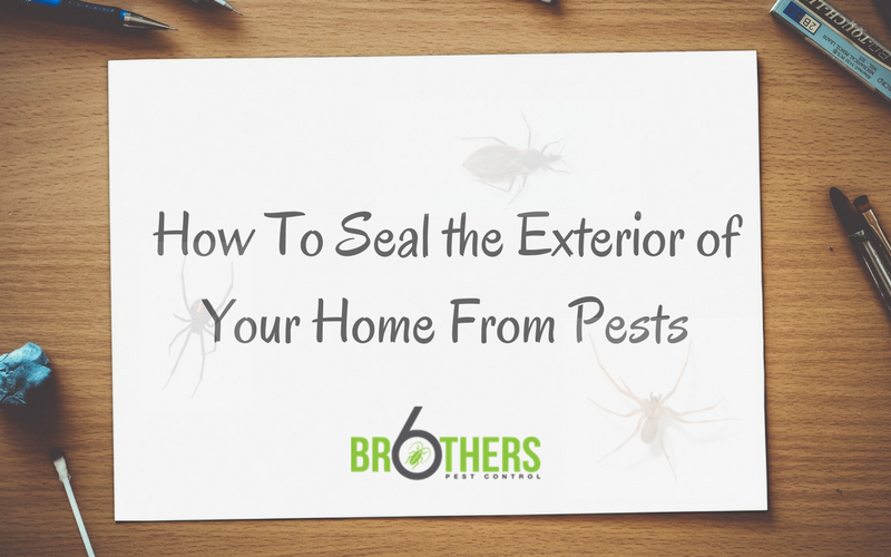 How To Seal the Exterior of Your Home to Keep Pests Out