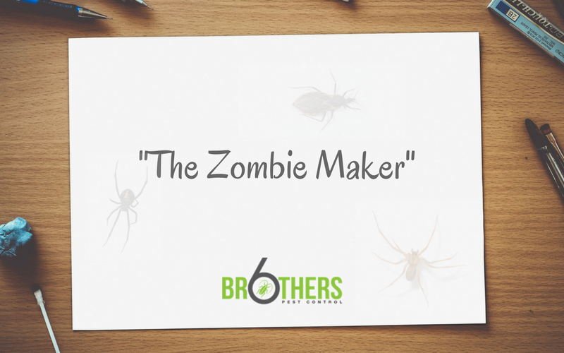 The Zombie Maker