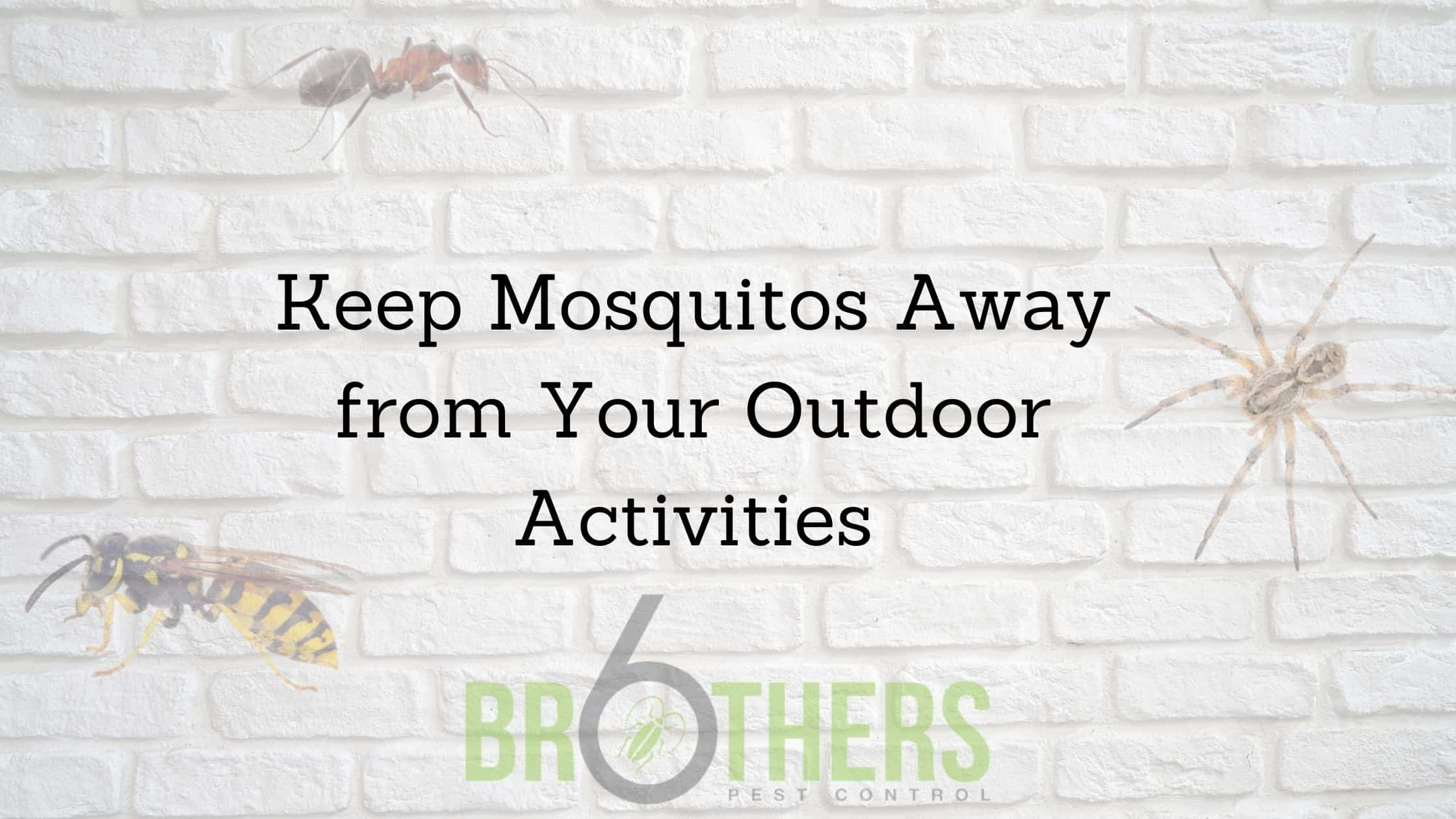 Keep Mosquitos Away from Your Outdoor Activities, Henderson, NV